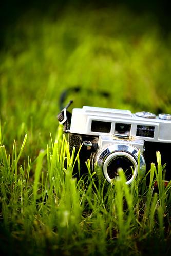 camera eye grass canon view kodak sunday 5d worms motormatic