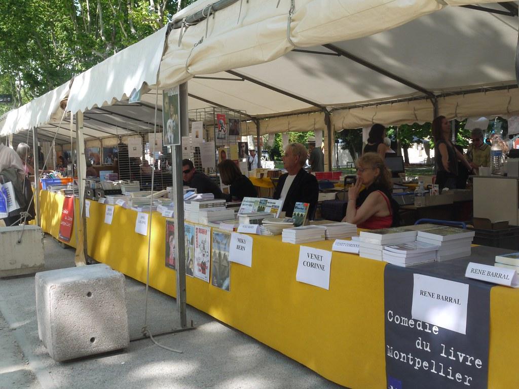related image - Comédie du Livre 2010 - Vue d'ensemble - P1380916