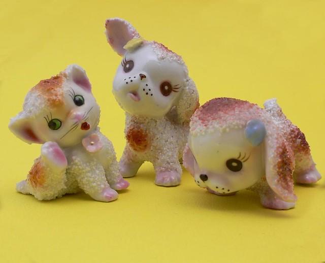 cat nippon