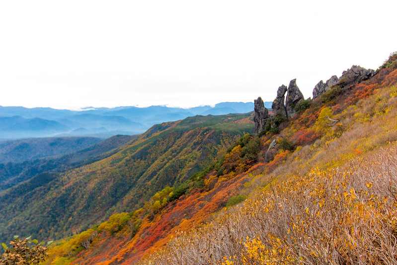 20150918-大雪山黒岳-0180.jpg