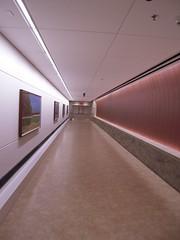Grand Rapids Medical Corridor North Pedestrian Tunnel