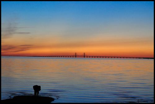 """bridge sea summer nikon heaven himmel malmö vatten sommar oresund höllviken öresund öresundsbron köpenhamn ljunghusen nikond90 mothernatureatherbest nikkor70300mmf4556g """"nikonflickraward"""" """"flickraward"""" ringexcellence dblringexcellence öresundskåne 10årsjubileet"""