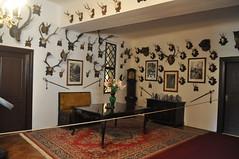 art, room, art exhibition, living room, interior design, home,