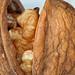 Small photo of Walnut