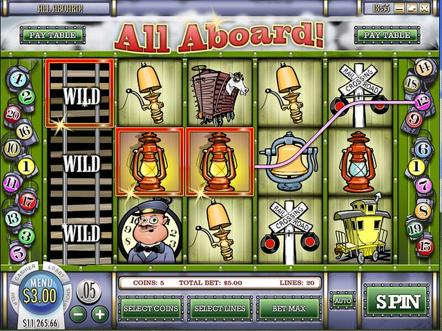 go wild casino flash version