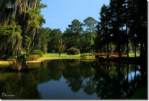 water gardens pond scenery alabama montgomery reflecions southernhomesandgardens