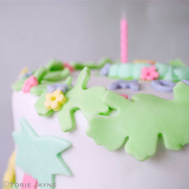 Jungle Cake close up