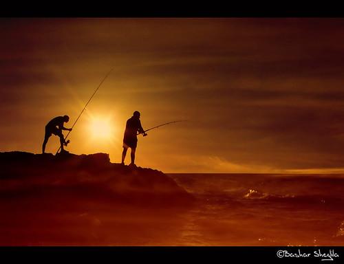 sunset sea sun fish men beach silhouette fishing rays libya بحر طرابلس ليبيا الماية mygearandmepremium mygearandmebronze mygearandmesilver mygearandmegold dblringexcellence