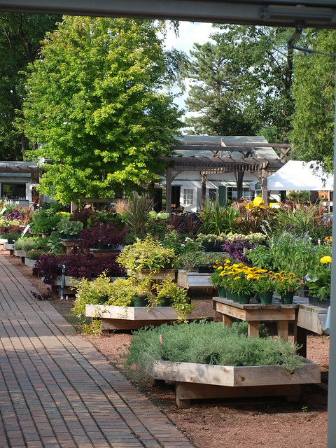 Take An April Mother's Day Garden Center Adventure -- Here's Chicagoland's Best