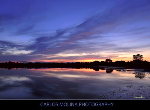 sunrise queens daybreak jamaicabaywildliferefuge coth nikond3 carlosmolina 1424mmf28 coth5 carlosmolinaphoto