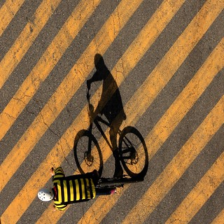 a bee-autiful ride