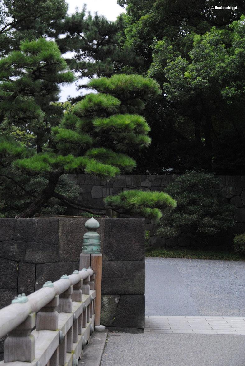 20140907-Unelmatrippi-Tokio-Keisarillinen-palatsi-DSC_0808