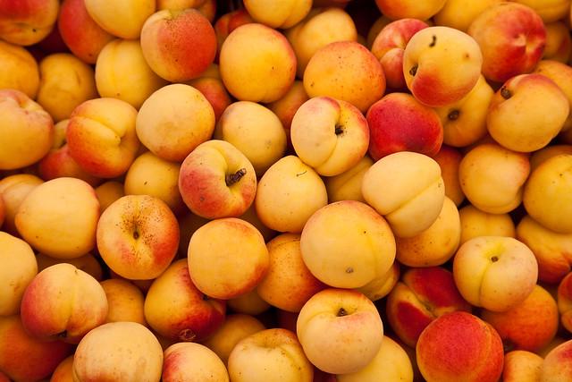 Albaricoques - Apricots