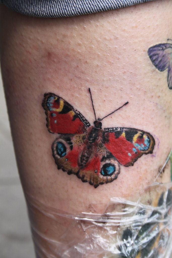 23d2d1a515331 peacock butterfly tattoo by Mirek vel Stotker. cover up ...