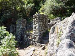 Peru Day 08 103 Wayna Picchu Climb