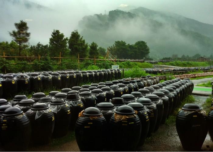 黒酢本舗のクロス壺畑
