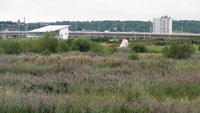 Cardiff Bay-Wetlands