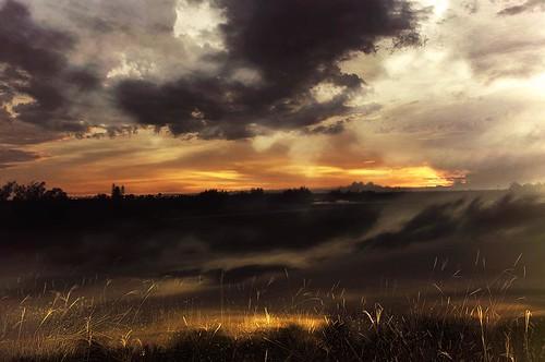 sunset field clouds golf orangesky digitaldoubleexposure paintingfeel