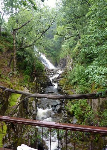 Coed y Brenin Waterfall