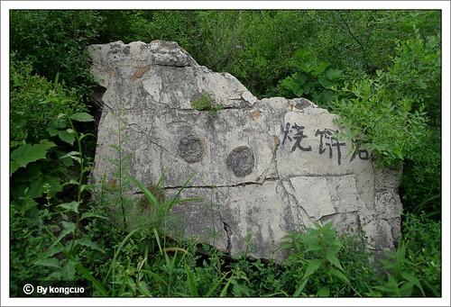 【图】藻团叠层石