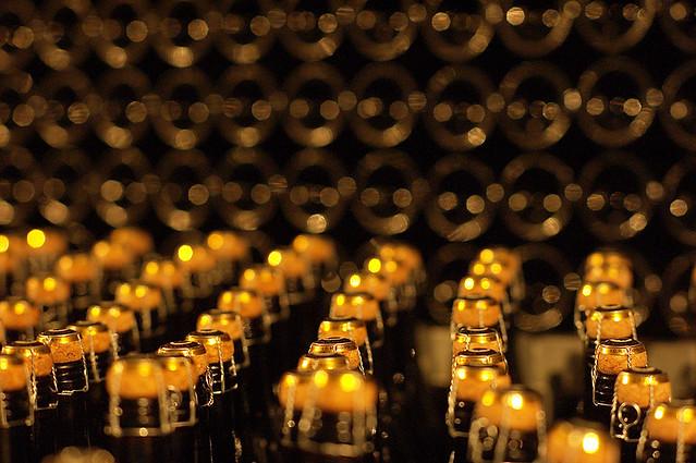 vini, vitigni, Italia, barolo, lambrusco, chianti, dolcetto