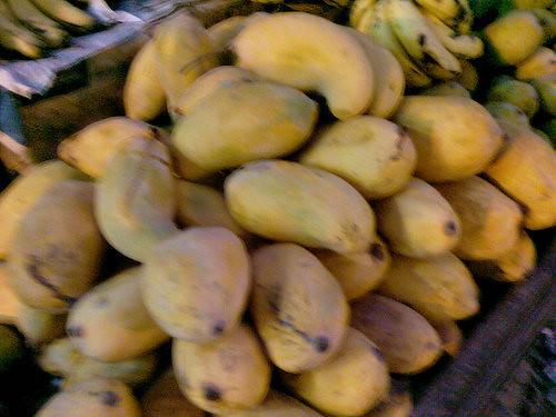 Sindhi mangos
