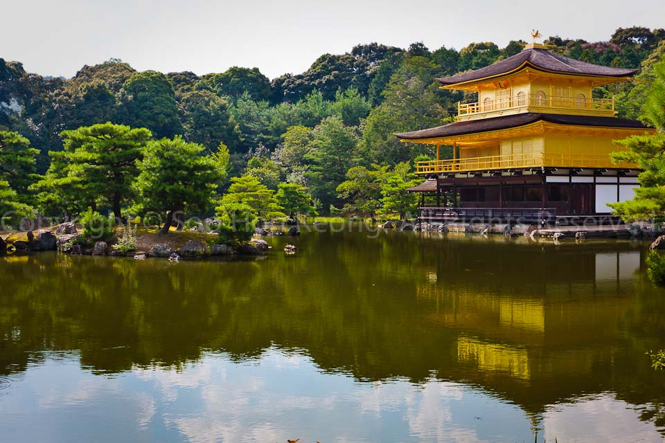 Kinkaku-ji Temple (Golden Pavilion) @ Kyoto, Japan