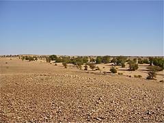 2007-04 Oued Elmaa WVC Ar#99ED6