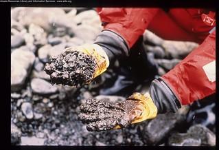 Exxon Valdez Oil Spill - 0149