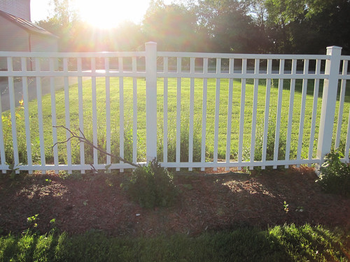 sun sunrise fence dawn md