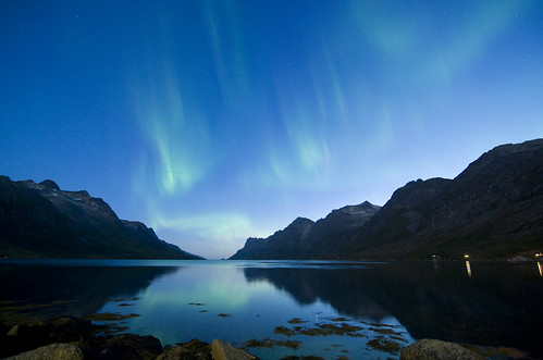 Ersfjord - Northern Lights in august