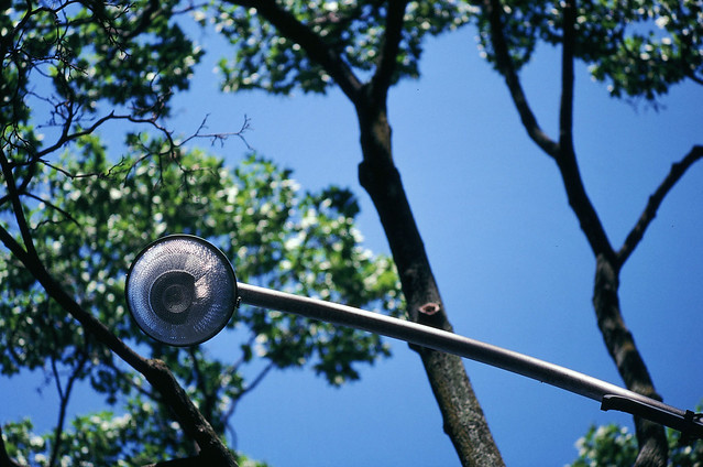 Rounded Illumination (in Kodachrome 64)