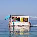sea shop by *vivika