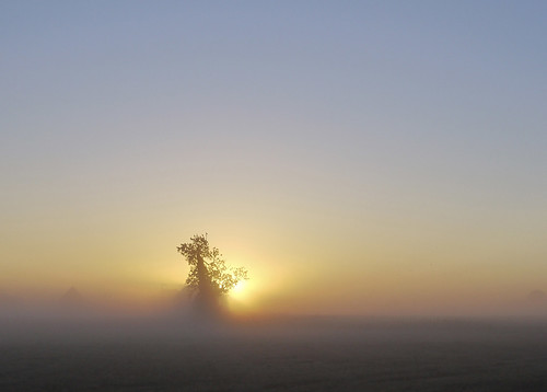 Misty sunrise Sep 03 2010