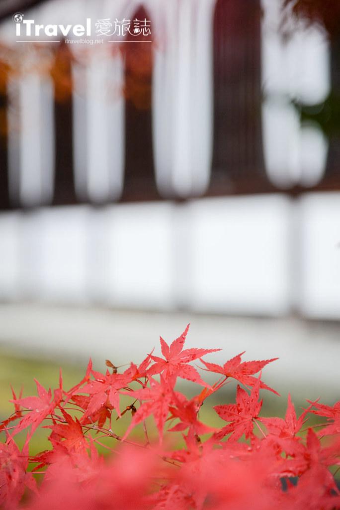京都赏枫景点 永观堂 (14)