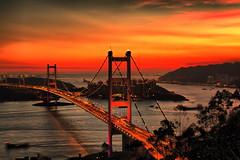 _MG_1119h 青馬大橋 Tsing Ma Bridge