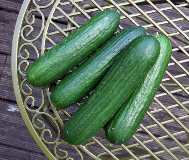 Cucumber Baby Food Recipes