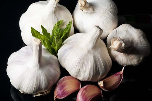 Garlic still life. Shot with an SB800 through an OrbisFlash on camera left