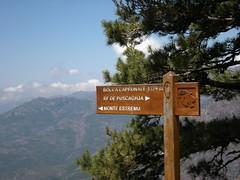 Sentier de la transhumance : Col de Caprunale