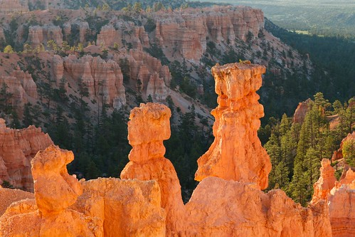 Hoodoos in Orange
