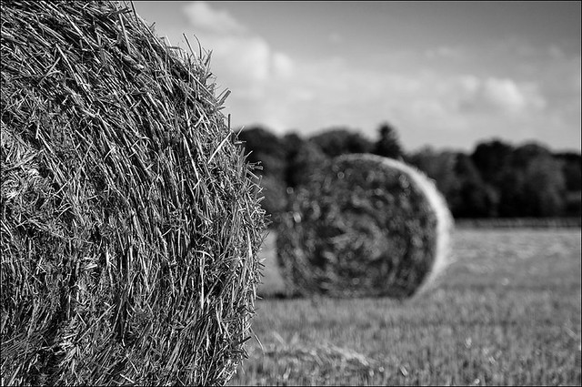 bale of straw (IV)