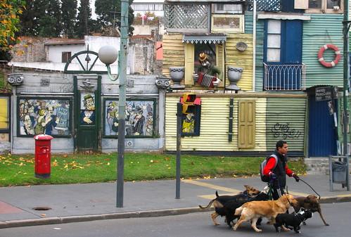El paseador de perros