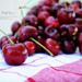 A bowl full of cherries! {58/365} by barefoot momma photography