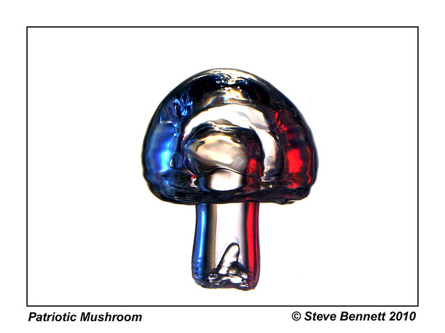 Patriotic Mushroom Bubble  365/91