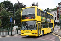 272 T272BPR YELLOW BUSES 090810