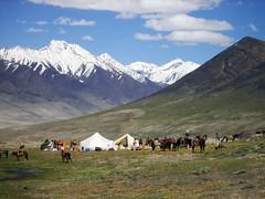 Wakhan 263 Kashch Goz
