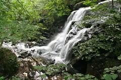 Narvau Gorges, Lormes