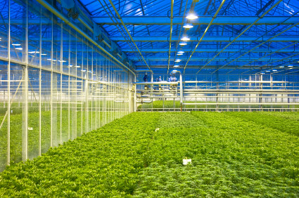 Glasshouse climate control