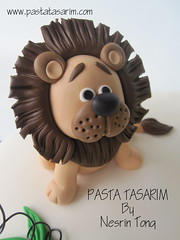 1ST BIRTHDAY ANIMAL CAKE - KAAN