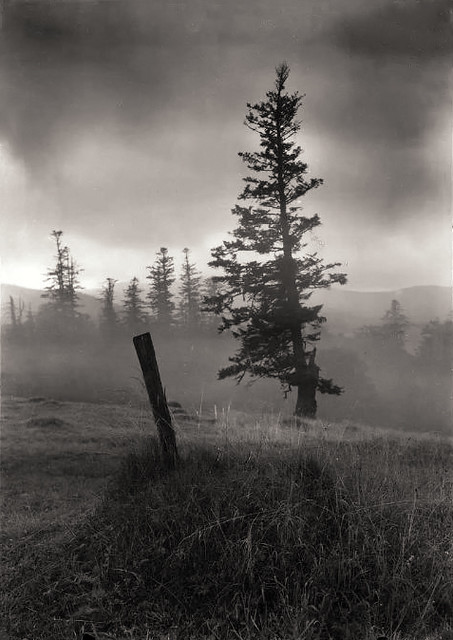 From the series, Vanished Statues in Mionsi, by Josef Sudek 1967